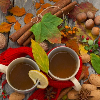 89446681 - warm tea for fall days